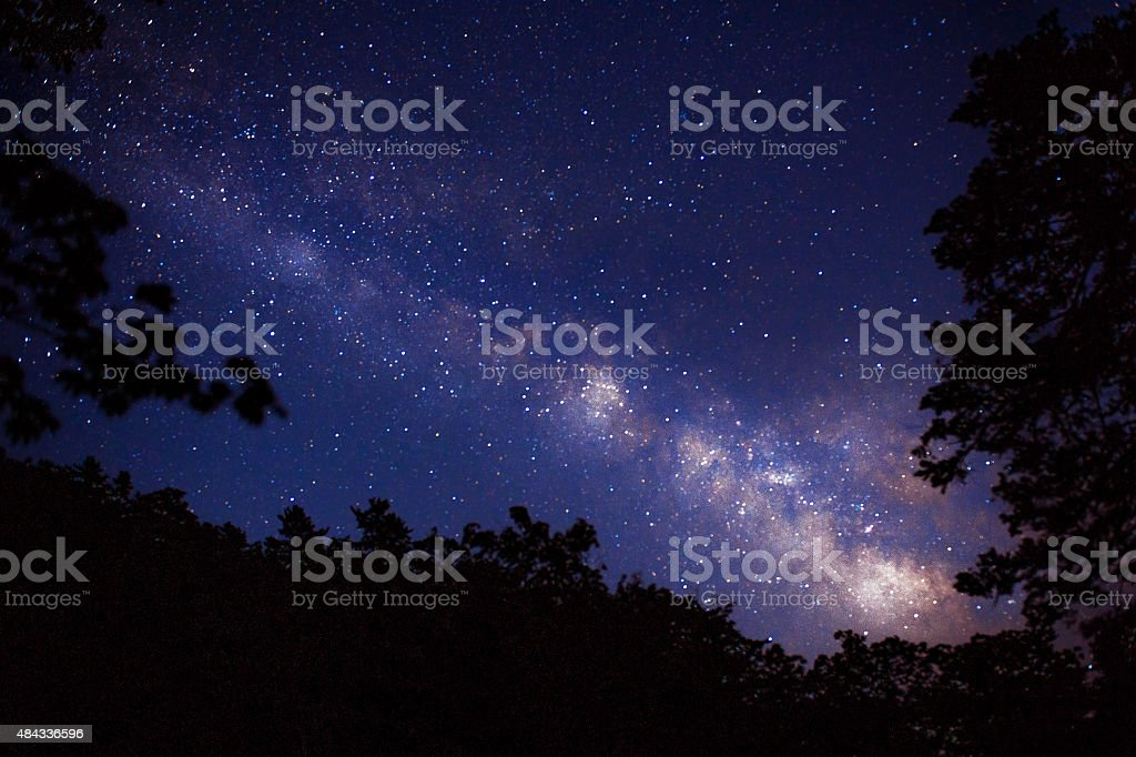 Milky Way and star with some trees . stock photo