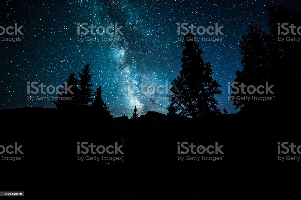Milky Way Galaxy Over Trees stock photo