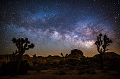 Desert landscape at night with Milky Way. Joshua tree national park in California, USA.