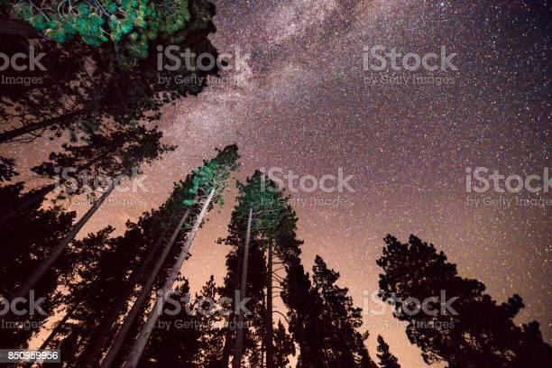 Photo of Milky Way Night Sky Lake Tahoe California Pine Tree Forest