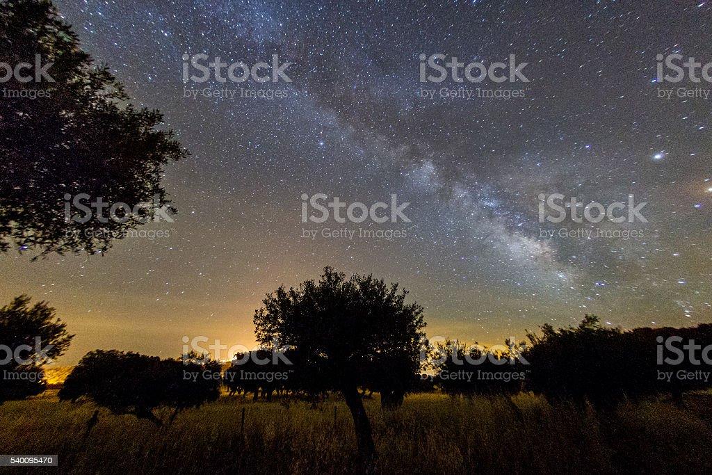 Milchstraße über Alentejo – Foto