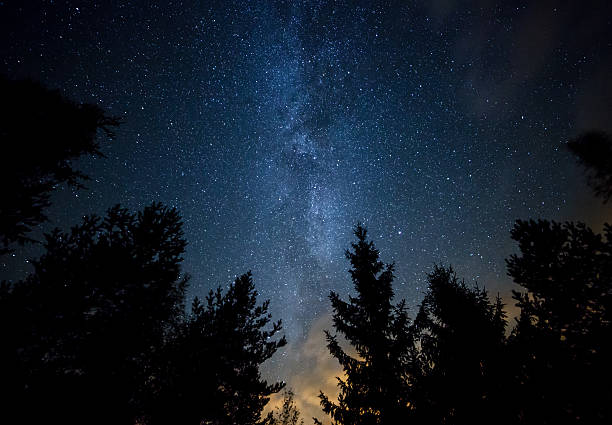 Milky Way over the Forest stock photo