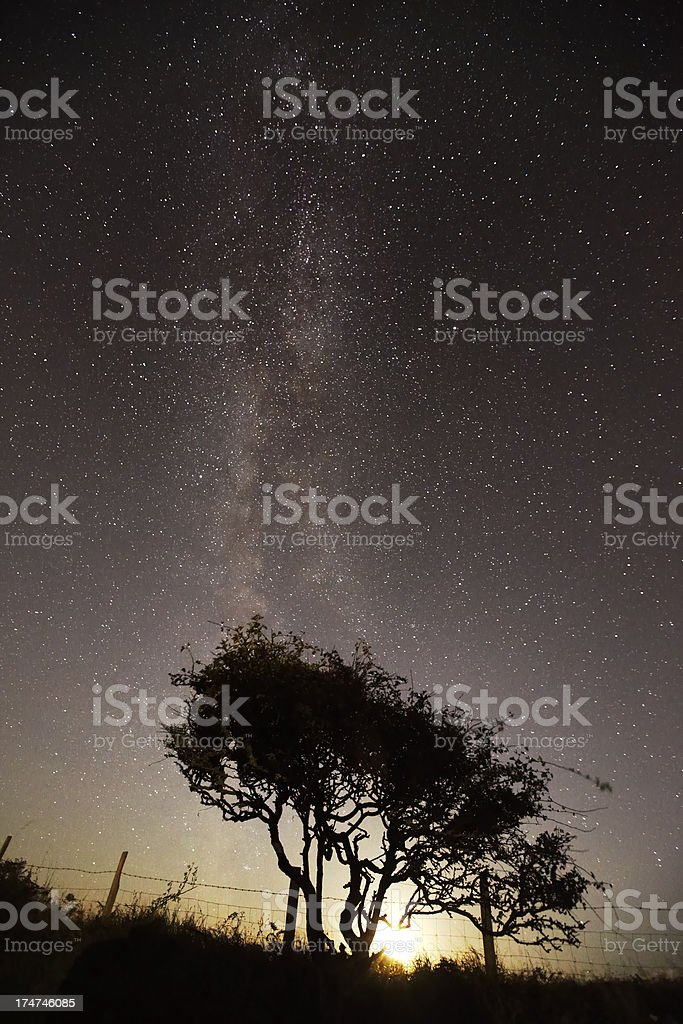 Milky Way with moonlight and bush royalty-free stock photo