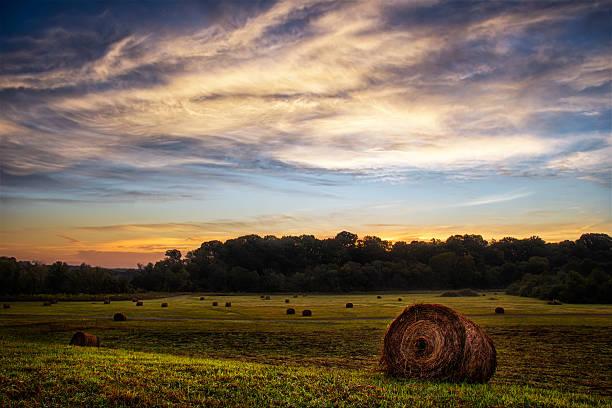 Mill Creek Field stock photo