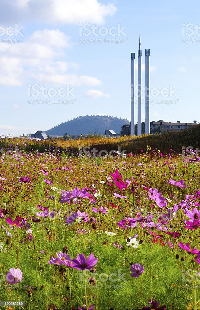 Mill Stacks and wildflowers, vertical stock photo