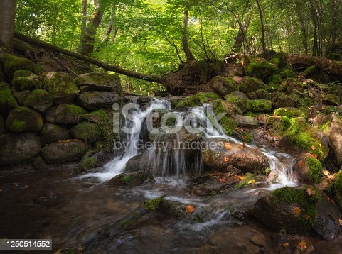 Mill Stream, Surroundings Of Ancient City Izborsk, Pskov Region, Russia.Beautiful Forest Creek In The Shade Of Green Trees. Landmark of the Izborsk-Maly Valley.Wet Stones And Fallen Leaves In The Sun