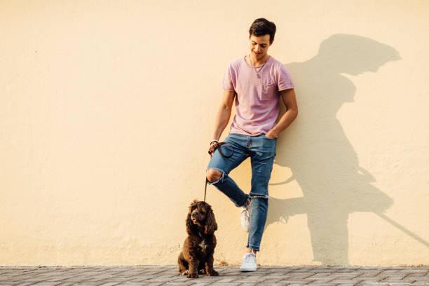 Millenial boy walking his dog stock photo