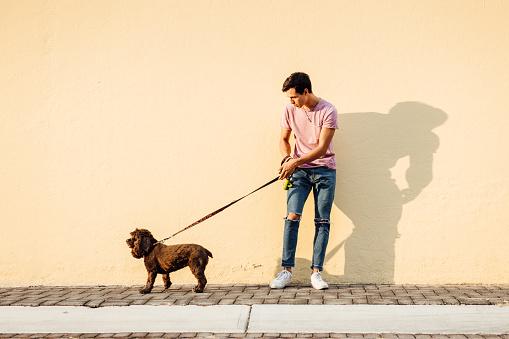 Millenial boy walking his dog
