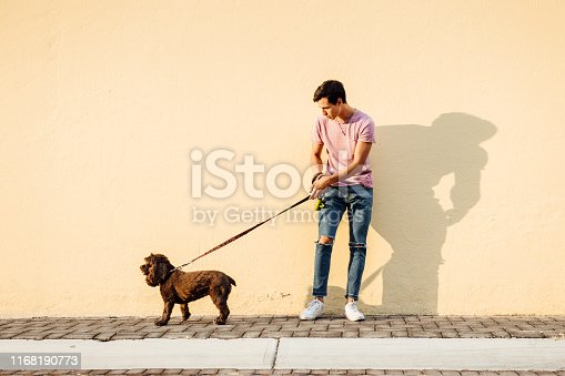 Millenial boy walking his English Cocker Spaniel