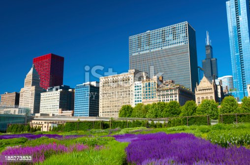 Chicago downtown buildings with the gardens (including flower beds) of Millenium Park in the foreground.
