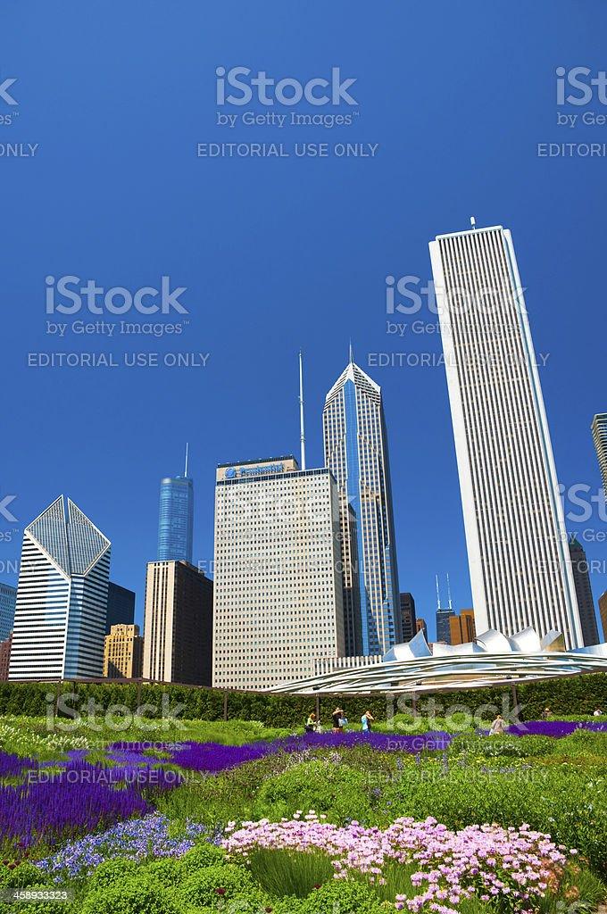 Millenium Park Gardens and Chicago skyscrapers stock photo