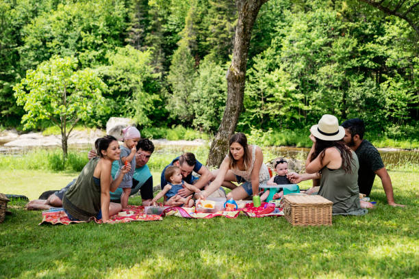 millennials families having a picnic outdoors in summer. - picnic foto e immagini stock