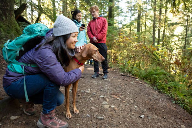 Millennials Using Mobile Mapping App with Vizsla Dog in Forest stock photo