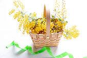 Flower arrangement of mimosa
