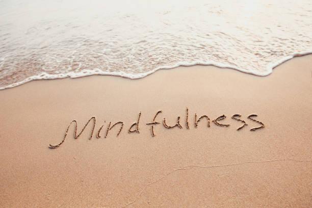 mindfulness 개념, 염두 생활 - mindfulness 뉴스 사진 이미지