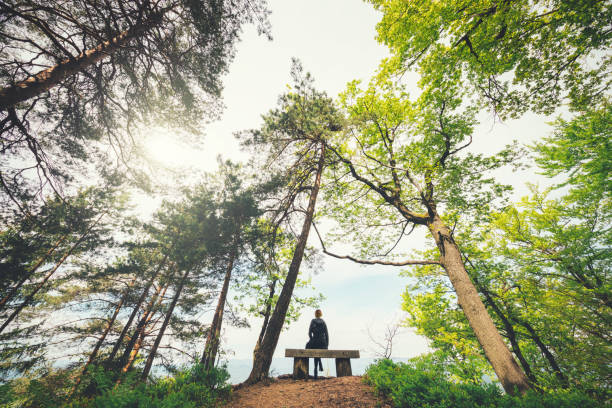 atención plena - mindfulness fotografías e imágenes de stock