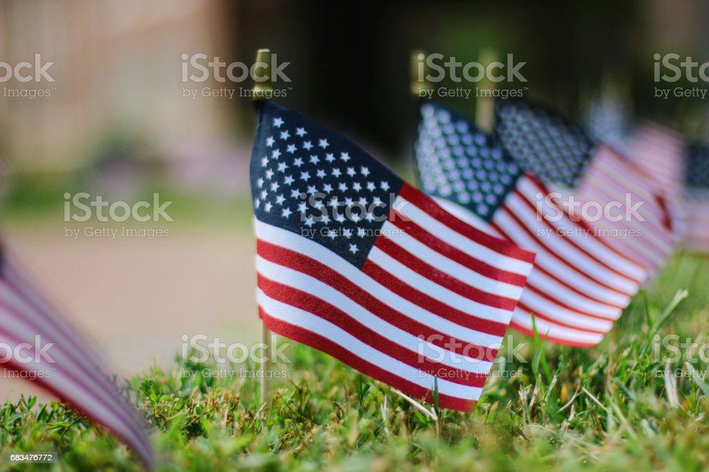 Mini American Flags stock photo