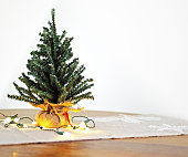 Mini Christmas tree with lights on seasonal table runner