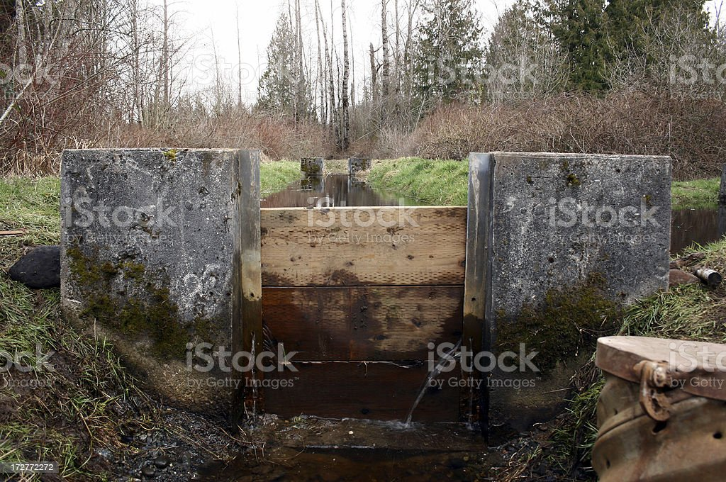 Mini Dam in wilderness area royalty-free stock photo