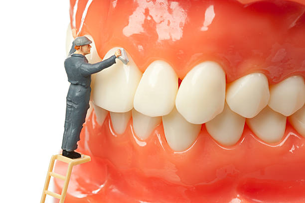 mini figure cleaning artificial teeth - enamel stock photos and pictures