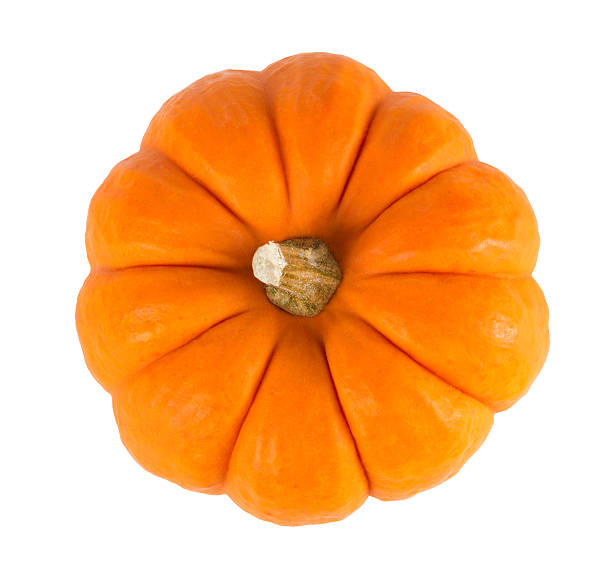 Mini Orange Pumpkin Isolated on White Mini orange pumpkin isolated on a white background. pumpkin stock pictures, royalty-free photos & images