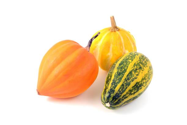 mini pumpkins on white isolated background. green orange. - pumpkin pie стоковые фото и изображения