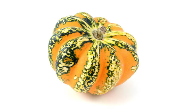 mini pumpkins on white isolated background. orange green. - pumpkin pie стоковые фото и изображения