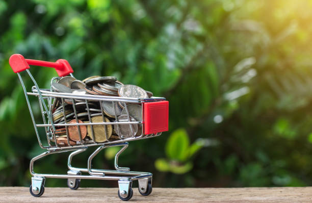 Mini shopping cart with coins on wood table and nuture backgroud. stock photo