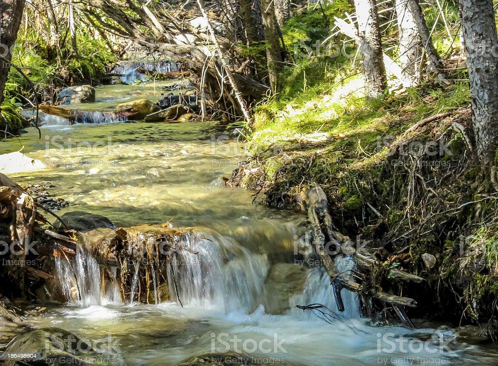 Mini waterfall in Kananaskis with sun shining through the trees royalty-free stock photo