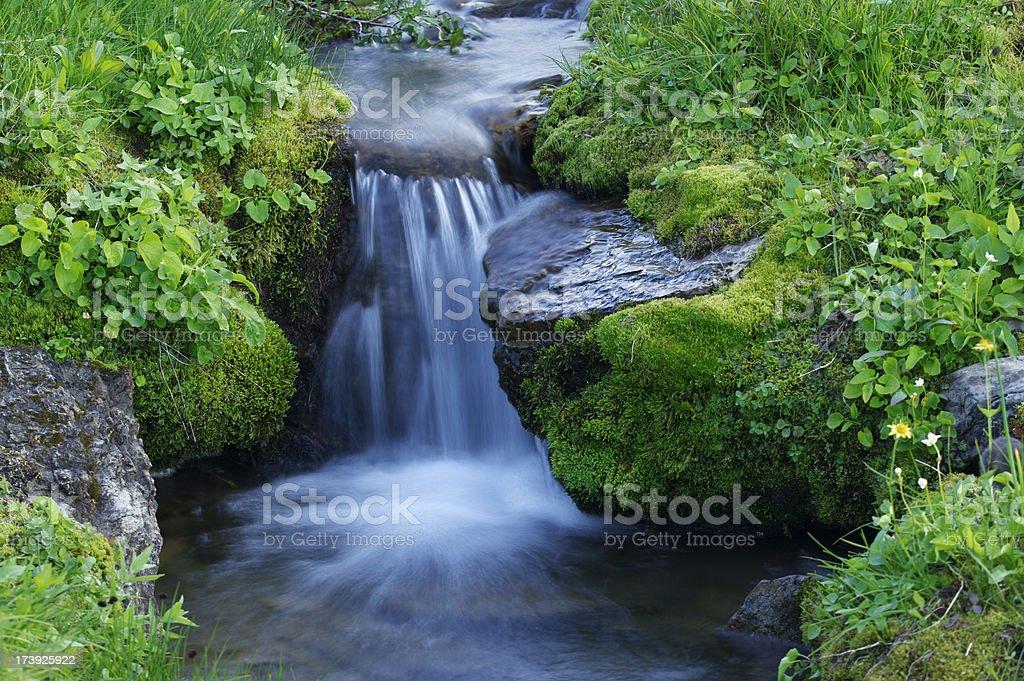 Miniature alpine waterfall royalty-free stock photo
