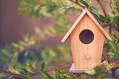Miniature birdhouse decoration hanging on branches of willow tree