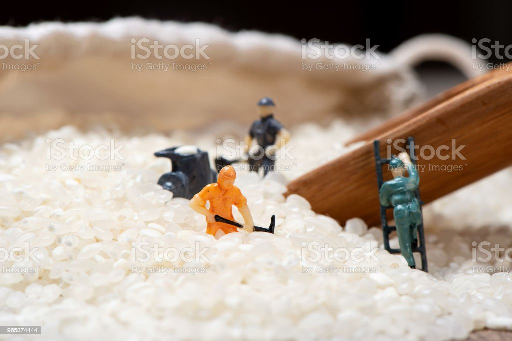 Miniature people: Men are working hard in raw rice mountain in a bamboo basket, the concept of labor. No pain, no gain. royalty-free stock photo