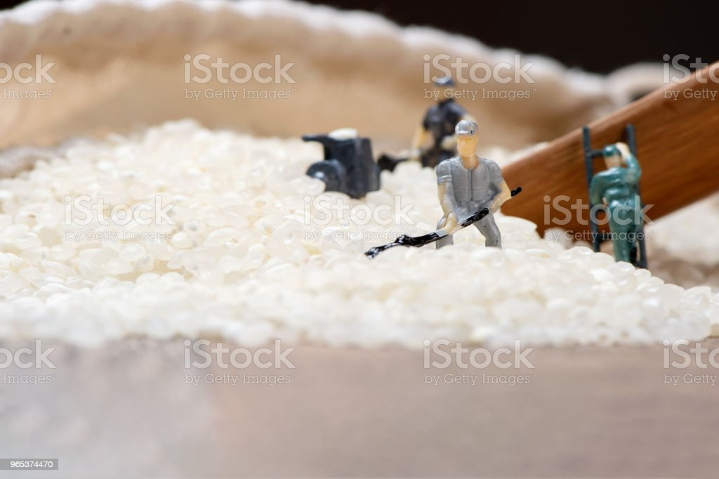 Miniature people: Men are working hard in raw rice mountain in a bamboo basket, the concept of labor. No pain, no gain. zbiór zdjęć royalty-free