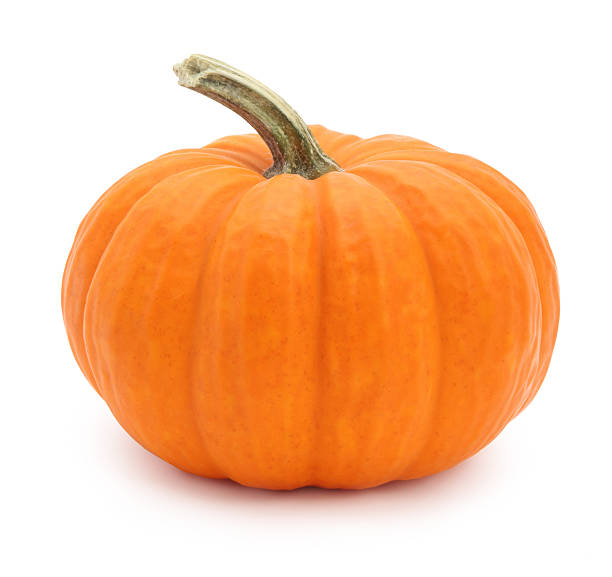 Miniature pumpkin Miniature pumpkin isolated on white pumpkin stock pictures, royalty-free photos & images