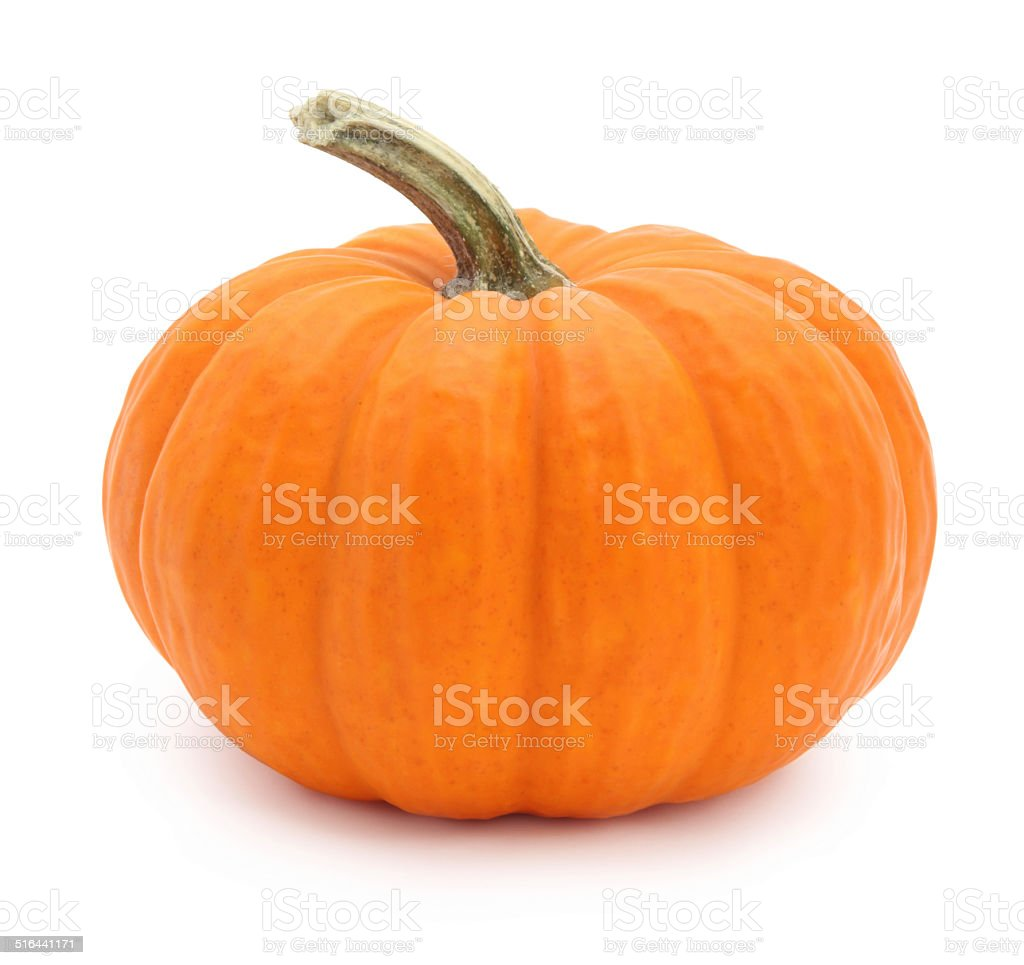 Miniature pumpkin stock photo