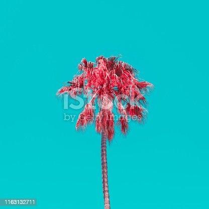 Minimal art of orange palm tree on the blue sky background. Bright vibrant colors. Minimalist.