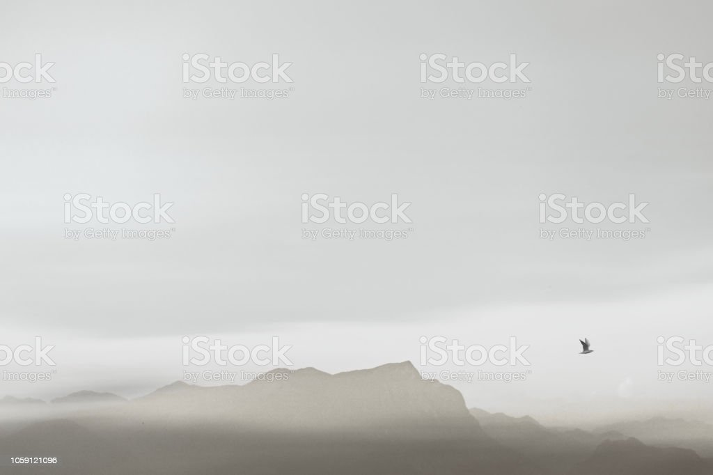 mínima paisagem preto e branca - foto de acervo