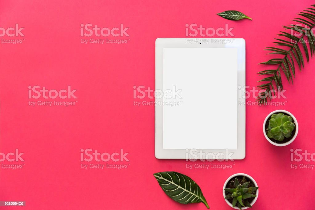 Minimal flat lay with tablet, plants and tropical leaves on pastel background for copy space. top view stock photo