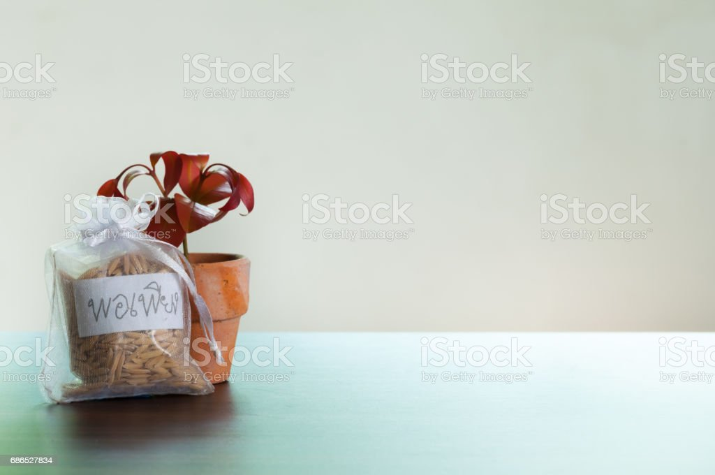 Minimal rice bag and tree pot on the table foto stock royalty-free