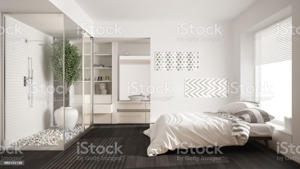 Minimalist Bedroom And Bathroom With Shower And Walkin