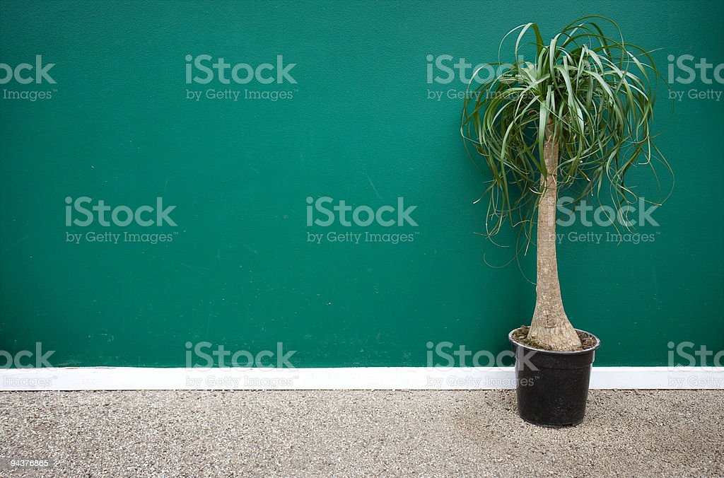 Minimalist decor royalty-free stock photo