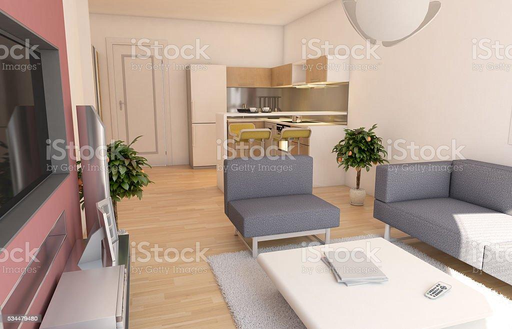 Minimalista Moderna Sala De Estar Y Cocina De Diseño Interior Stock ...