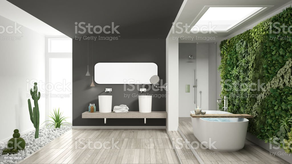 Minimalist white and gray bathroom with vertical and succulent garden, wooden floor and pebbles, hotel, spa, modern interior design stock photo