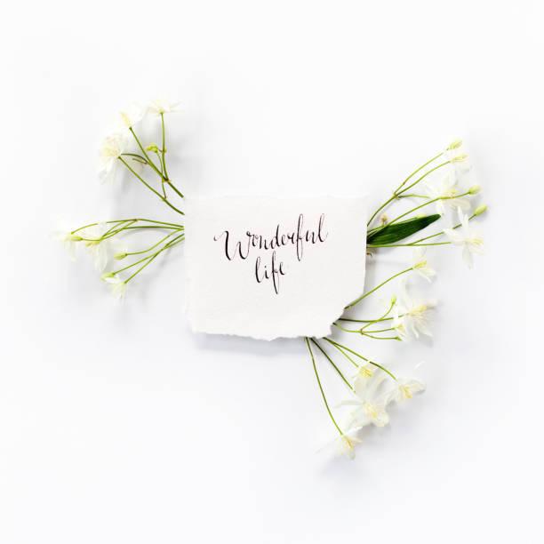 """minimalistische komposition mit worten """"wonderful life"""" in kalligraphischen stil geschrieben auf papier mit kleinen weißen clematis blumen rahmen auf weißem hintergrund. flach legen, top aussicht. - herz zitate stock-fotos und bilder"""