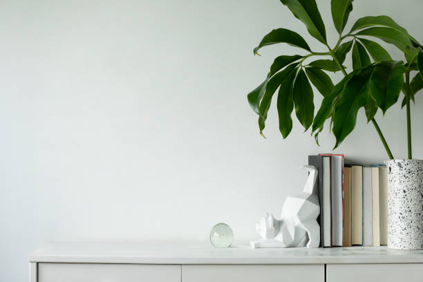 Minimalistic concept of white home interior whit copy space tropical picture id1090546852?b=1&k=6&m=1090546852&s=612x612&w=0&h=qxlmocus8ukbk80 4bpr3pxmucg1x5hm2nmo9df1zzo=