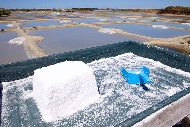 mining salt, Guerande salt evaporation pools nearby Guerande, France. It is where the famous grey salt comes from. evaporation stock pictures, royalty-free photos & images