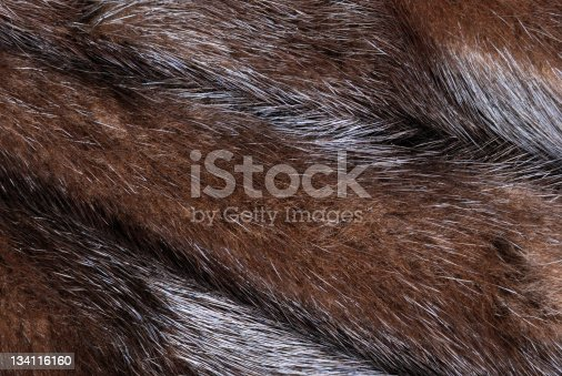 Background of Mink fur