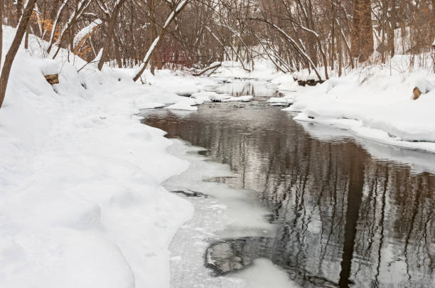 Minnehaha Creek and Forest Snowscape stock photo