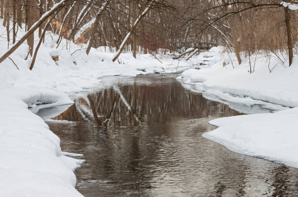 Minnehaha Creek Flowing Through Snow Covered Forest stock photo