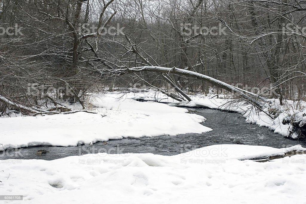Minnesota Winter royalty-free stock photo